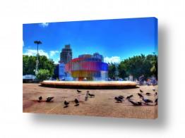 תמונות לפי נושאים כיכר | כיכר דיזנגוף והיונים