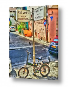 כלי רכב אופניים | נוה צדק - שבזי