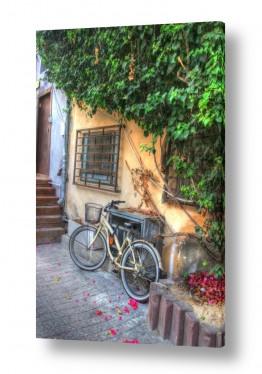צילומים מבנים וביניינים | סמטה בתל אביב