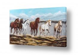 תמונות לסלון | דהרת סוסים