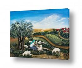 נוף תמונה פנורמית | כבשים בגליל