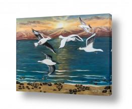 ציורים בעלי חיים | משק כנפיים