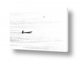 כלי שייט סירה | דייג וציפור