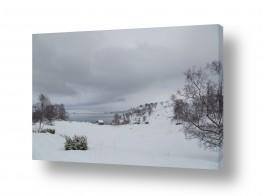 צילומים מזג-אוויר | שלג וקרח