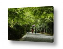 צילומים כפרי | גן ירוק