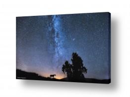 נושאים חלל ואסטרונומיה | לאורך החומות