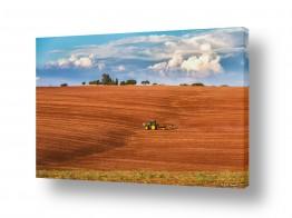 צילומים טבע דומם | ארץ זבת חלב ודבש...