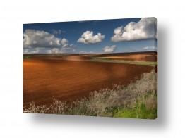 תמונות נופים נוף שמים | חקלאות ציורית