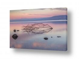 אמנים מפורסמים צילומים שנמכרו | הכנרת כחלום...