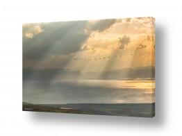צילומים חופים וים | נוף בראשית..