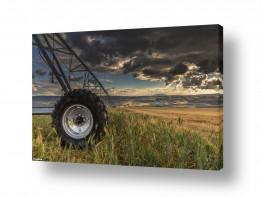 שדות חיטה | חקלאות מודרנית