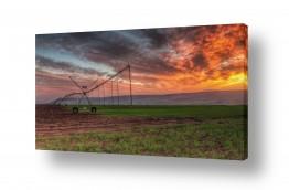נושאים תמונות נופים נוף | חקלאות ישראלית