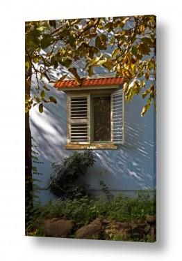 דלתות דלת וחלון | תריס וגינה