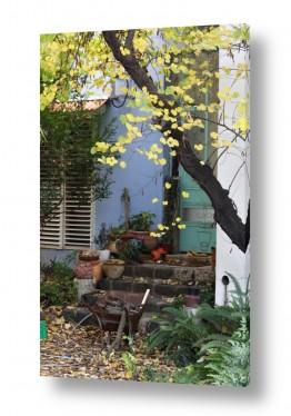 נושאים נוף כפרי | כניסה מהחצר