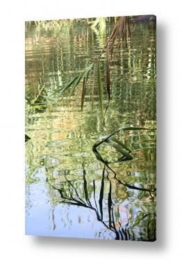 צילומים טבע | צבעי מים1