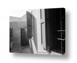 צילומים מיכל פרטיג | קומפוזיציה