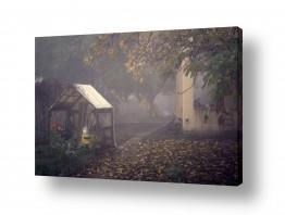 תמונות לפי נושאים ציורי | ערפל