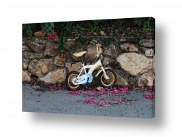 כלי רכב אופניים | תמונה בקיר