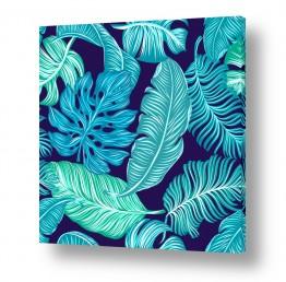 תמונות לפי נושאים טרופי | עלים בכחול