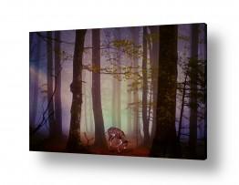 במבי ביער המכושף