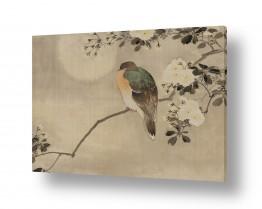 אסיה יפן | ציור יפני