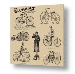 תמונות לסלון סלון סקנדינבי נורדי | אופניים מפעם