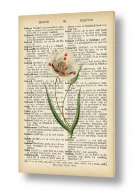 ציורים רטרו | פרח טוליפ רטרו על טקסט