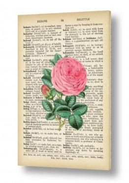 ציורים רטרו | ורד רטרו על טקסט