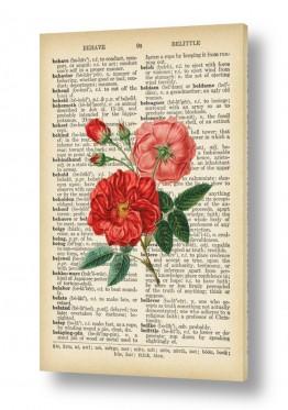 ציורים רטרו | 2 ורדים רטרו על טקסט
