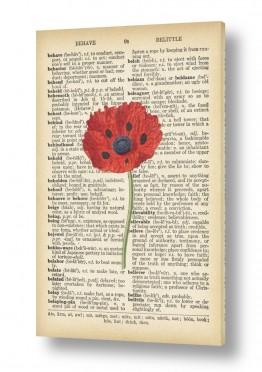פרחים פרגים | זרעי פרג רטרו על טקסט