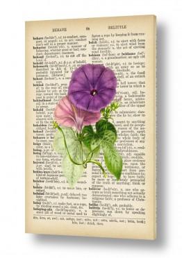 פרח סגול ורוד רטרו על טקס