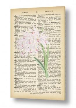 פרחים סחלבים | סחלב לבן רטרו על טקסט