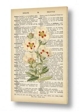 ציורים Artpicked  | צמח לבן רטרו על טקסט