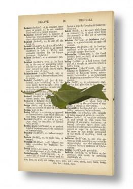 ציורים Artpicked  | עלה ירוק רטרו על טקסט