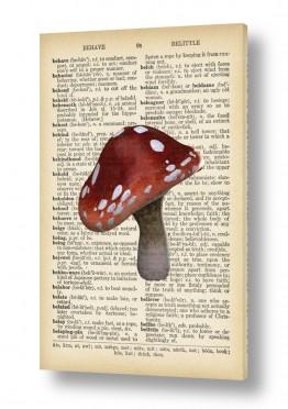 ציורים Artpicked  | פיטריה רטרו על טקסט