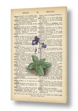 ציורים Artpicked  | פרח סגול ירוק רטרו טקסט