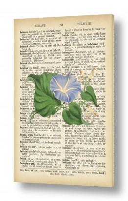 ציורים רטרו | צמחסגול ירוק רטרו על טקסט