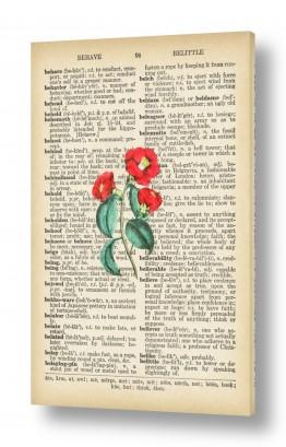 ציורים רטרו | פרח אדום רטרו על טקסט