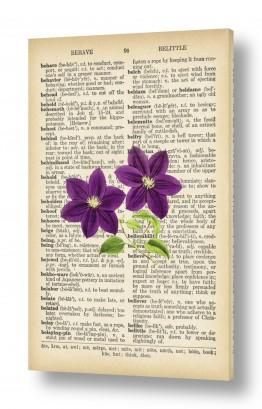 ציורים רטרו    פרחים סגול רטרו על טקסט