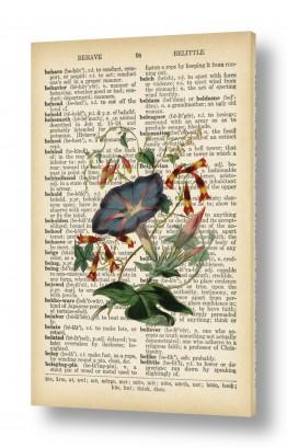 ציורים Artpicked  | צמח רטרו על טקסט