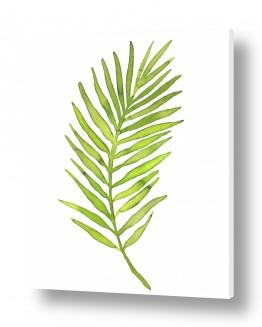 עץ תמר | ענף רענן