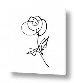 תמונות לפי נושאים אחד | פרח בקו אחד