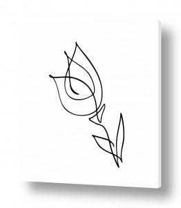 ציורים רישום | טוליפ בקו אחד