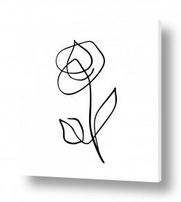 תמונות לפי נושאים אחד | ורד בקו אחד