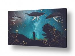 חיות מים דגים   לויתנים