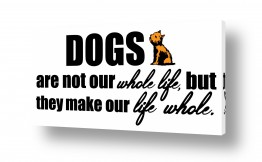 חיות בית כלבים | Dogs are our life