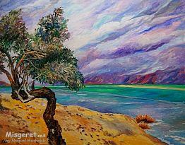 עץ השיטה על חוף ים המל