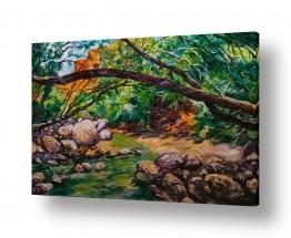 ציורים טבע דומם | נחל בוקק