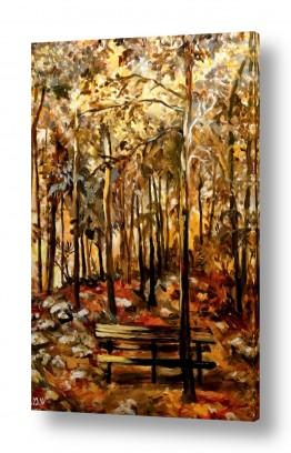 ורוד ורוד | יער עמינדב