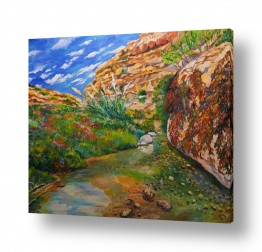 ציורים מים | נחל פרת (ואדי קלט)